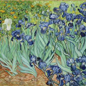 Ван Гог. 1889. Les Iris Музей Гетти, Лос-Анджелес.
